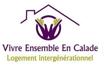 Logo VEEC